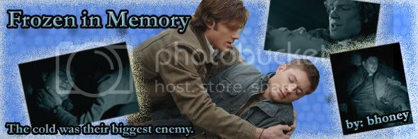 Frozen in Memory fanfic banner