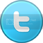 Business Networking Twitter Icon